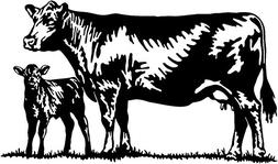 Cattle Decal #17 Livestock Ranch Cow Bull Window Stickers, D